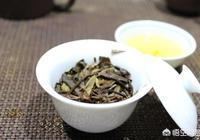 怎樣辨別白茶產自福鼎還是政和?