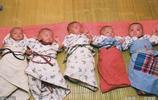 家有六個娃老二是五胞胎,三男兩女天天像打仗,農家小院不消停