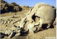 """怎麼避免考古人員在田野考古中""""帶私貨""""?"""