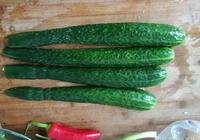 荊芥拌黃瓜 邊吃邊說這瓜為啥叫黃瓜的梗