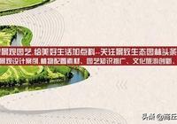 萱草-新品種大全