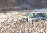 一家人出行發生車禍 後座5個孩子全部死亡 父母因系安全帶倖存