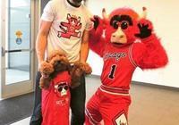 羅賓-洛佩斯帶著自己的寵物狗與公牛吉祥物合影