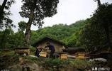 陝西深山夫妻外出打工受挫折,回鄉住百年老宅形影不離養土蜂致富