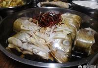 白魚怎麼烹飪更好吃?