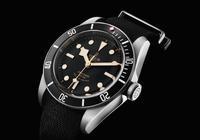 最近想買一款帝舵的手錶,預算在3萬以內,大家有什麼好推薦嗎?