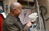 晉南77歲老漢楊樹上發現一個稀罕物,大家幫忙看看這是個啥寶貝