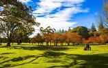 新西蘭,悠閒歡快的田園牧歌,大洋洲的璀璨新星