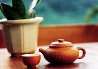 什麼叫一壺一茶?