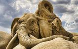 沙雕刻藝術欣賞:來自世界各地,令人難以置信的作品