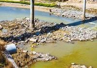 """河岸依舊""""髒亂差"""" 涇河整治效果在哪裡?"""