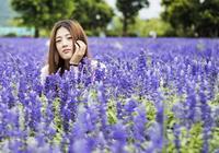 福州花海公園成紫色海洋