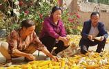農村未來沒人種地,誰來保證糧食供應?聽聽大叔怎麼說