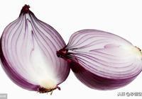 種植洋蔥,洋蔥畝產量多少斤 洋蔥幹尖是什麼原因,管理很重要