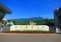 招生動態:四川農業大學,19年招生9300人,級差為5分
