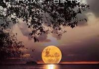 七絕/又逢佳節團圓月,天上心中共一輪