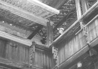"""1958年南昌全民行動緊急""""圍剿""""白蟻"""