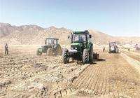 """土地託管提供""""保姆式""""服務 三岔口嘎查村民致富有了新路子"""