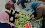 城裡菜場玉米賣五塊錢一斤,農村老人賣自家種的玉米一塊五一斤