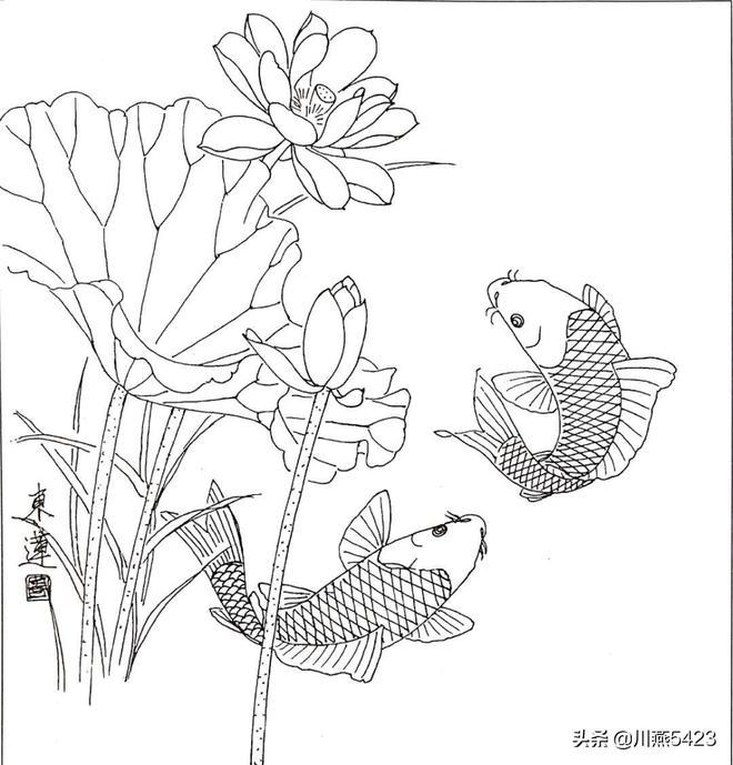 工筆錦鯉畫法