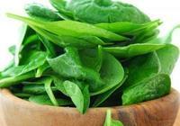 哪些食物中含有葉酸?