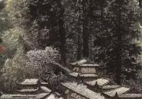 孫永山水畫作品,用筆遒勁、深涵厚重、曠達潤澤、淳樸自然