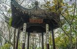 紹興第一公園——蕺山公園