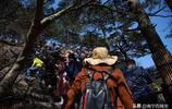 實拍:安徽黃山清明假期被6萬遊客擠爆 有人晚上10點還沒能下山