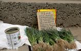 10歲男孩集市擺無人菜攤,菜品只有一種,旁邊紙板上的字讓人心酸