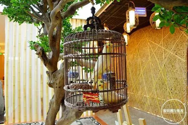 銀川開了一家很高級的茶餐廳,藏在大閱城!