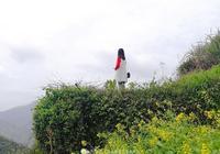 夢裡木梨硔,花開祖源村-黃山腳下最美高山村落