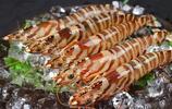 只識小龍蝦?盤點五種美味蝦,這些蝦中貴族一隻就是半個月工資!有機會一定要嘗一嘗,哈喇子流了一地