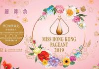 2019香港小姐競選開始了,快來圍觀吧