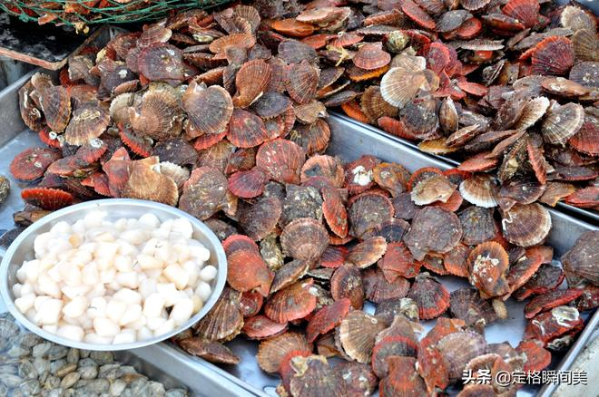 探尋青島春天早市 蝦爬45一斤 每天往返碼頭30公里 好食材好口碑