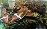 大蝦龍蝦海蔘120元一斤 鮮鮁魚20元一斤 休漁期海鮮價格平穩