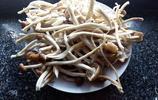 茶樹茹玉米排骨湯