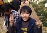 """樂清""""失聯男孩""""母親事先踩好點 男孩躲進電動車多日"""