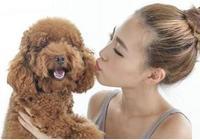 養狗的注意了!狗狗這樣養,不僅健康,還可以延長它的壽命