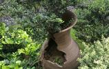 別墅女主人拉回一堆破陶罐,保安直納悶,可鄰居一看卻誇她有品位