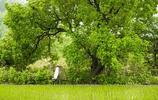 攝影師到一山村當名譽村長,冒雨實拍山村美景,您喜歡這個地方嗎