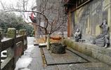 雪後老長沙街頭的影像 有些惆悵和冷清