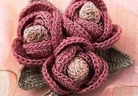 這樣鉤編立體玫瑰花實在太有才了,簡直美上了天,好想學起來!
