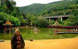 旅行記憶:玩轉孔雀山莊,一次與孔雀仙子的美妙約會