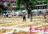 博羅:中醫藥文化進校園