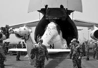 中國為何向蘇丹派出直升機維和部隊?