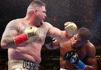 魯伊茲的成功讓張君龍的黑粉啞口無言,證明了拳擊不需要肌肉男