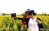 霸屏時間,寶雞陵輝村的油菜花今天就要綻放花容了,就等你的到來