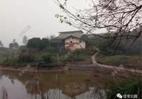 70萬回四川農村蓋別墅,只為父母養老、哥哥開農家樂,全村頭一棟