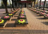 尋山東濟南籍烈士劉西瑞親人,他長眠菏澤張和莊烈士陵園