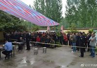 南召法院:濫伐林木獲刑罰